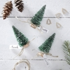 Picture of Green brush tree name place cards
