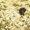 Picture of Confetti push pop - Gold