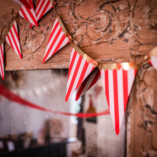 Picture of Bunting Circus Party