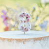Picture of Pressed petal  number 8 birthday cake candle